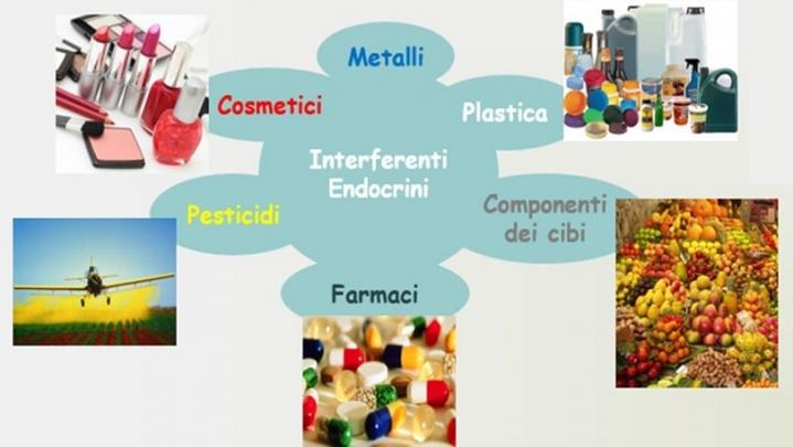 Workshop - Identificazione di inquinanti presenti negli ambienti di lavoro che interferiscono con l'azione degli ormoni estrogeni