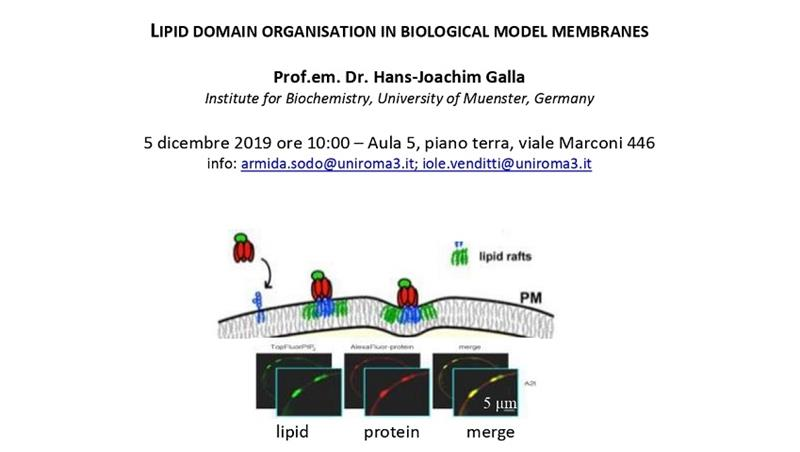 "Seminario Nanoscienze: ""Lipid domain organisation in biological model membranes"""
