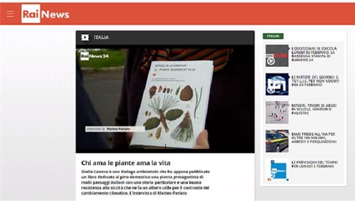 Chi ama le piante ama la vita_Intervista alla prof.ssa Giulia Caneva su Rainews24