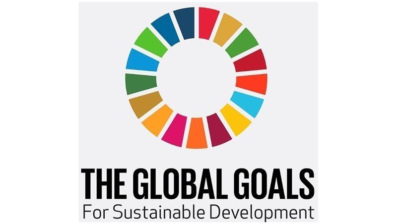 Roma Tre per lo sviluppo sostenibile.  Un Corso multidisciplinare sull'Agenda 2030