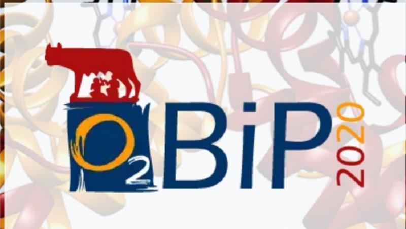 """Congresso internazionale O2BiP """"Oxygen sensing and binding proteins"""" 2020 dall'1 al 4 settembre"""