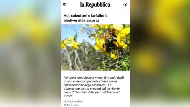 Giornata della Terra 2021. Api, coleotteri e farfalle: la biodiversità nascosta su La Repubblica