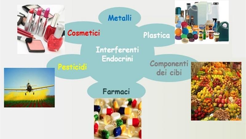 Workshop: Identificazione di inquinanti presenti negli ambienti di lavoro che interferiscono con l'azione degli ormoni estrogeni