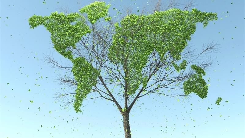 Nuovo insegnamento sull'Agenda 2030 per lo sviluppo sostenibile