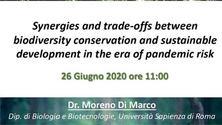 Synergies and trade-offs between biodiversity conservation and sustainable development in the era of pandemic risk
