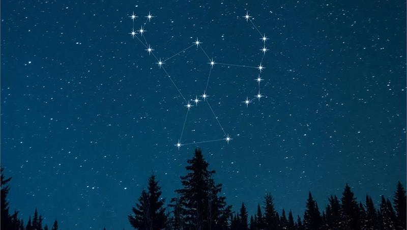 Il cielo di Natale, tra Orione il cacciatore, i cani celesti e la cometa che viene dalle stelle