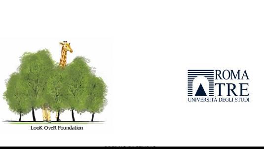 Bando Look Over Foundation - Come comunicare in modo innovativo il concetto di rischio ai risparmiatori